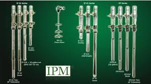 IPM image