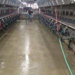 coated milking station